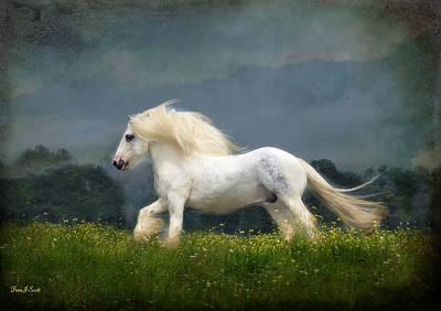 Running Horse Photograph - Blue Billy C1 by Fran J Scott