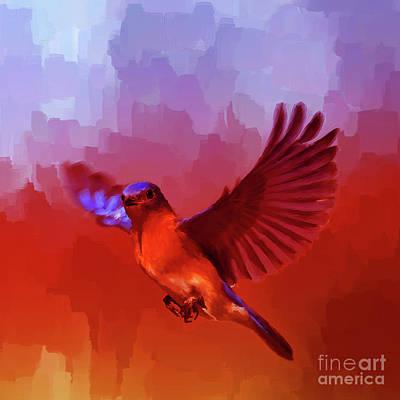 Blue Bird 01  Original by Gull G