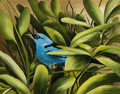 Blue Bird In Branson Art Print