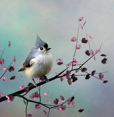 Titmouse Digital Art - Tufted Titmouse by John Junek