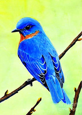 Painting - Blue Bird King by John W Walker