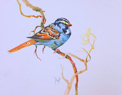 Painting - Blue Bird by Mary Scott