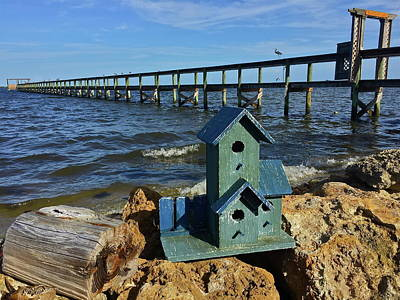 Photograph - Blue Birdhouse By The River by Denise Mazzocco