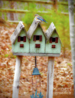 Photograph - Blue Birds Castle by Laura Brightwood