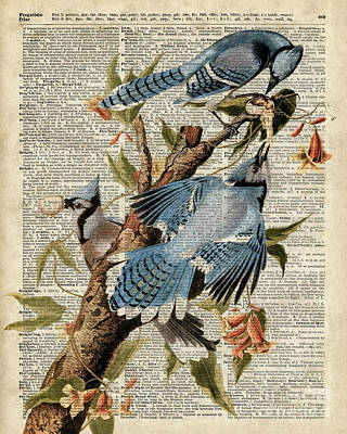 Upcycled Art Digital Art - Blue Birds Vintage Illustration Dictionary Art by Jacob Kuch