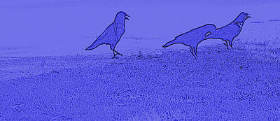 Digital Art - Blue Black Birds by Bartz Johnson