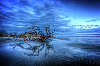 Photograph - Blue Blue Morning by Debra and Dave Vanderlaan