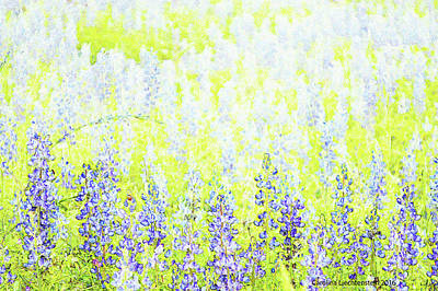 Photograph - Blue Bonnet Impressions II by Carolina Liechtenstein
