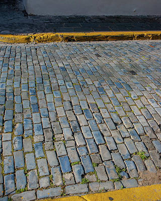 Photograph - Blue Brick Road by Herb Paynter
