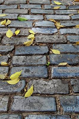 Photograph - Blue Bricks With Yellow 2 by Suzanne Oesterling
