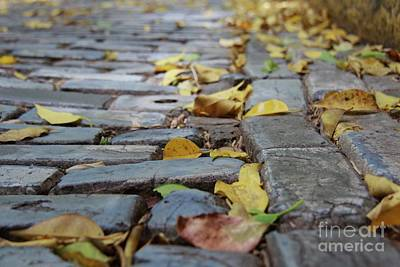 Photograph - Blue Bricks With Yellow by Suzanne Oesterling