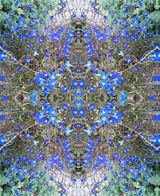 Photograph - Blue Bush Flower Fractal Heart 3 by Julia Woodman