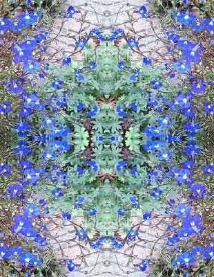 Photograph - Blue Bush Flower Girl Praying Fractal by Julia Woodman