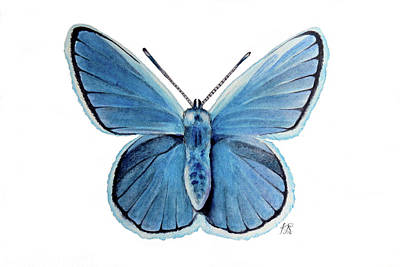 Wall Art - Painting - Blue Butterfly by Kristina Spitzner