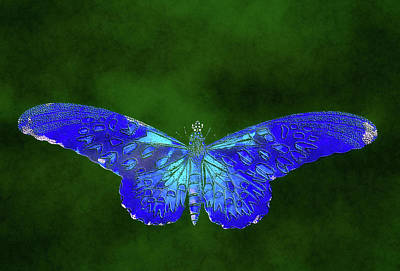 Digital Art - Blue Butterfly On Green by Georgiana Romanovna