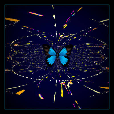 Digital Art - Blue Butterfly by Rose  Hill