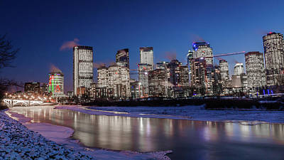 Lady Bug - Blue Calgary by Cory Huchkowski