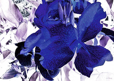 Invert Color Photograph - Blue Canna Lily by Shawna Rowe