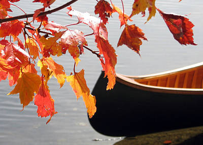 Photograph - Blue Canoe In Fall by Betsy Derrick