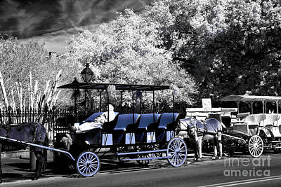 Photograph - Blue Carriage Nap Fusion by John Rizzuto