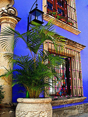 Blue Casa With Fern Art Print by Mexicolors Art Photography