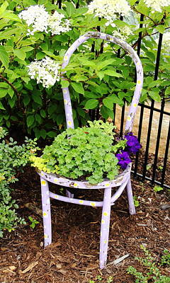Photograph - Blue Chair Planter by Allen Nice-Webb