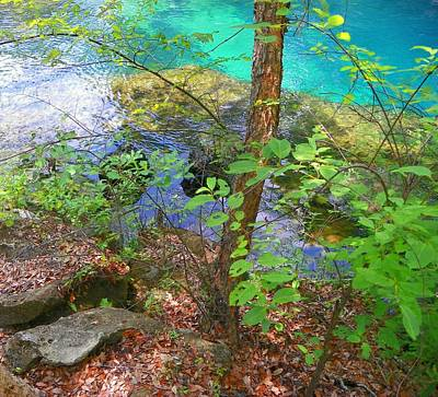 Chiefland Photograph - Blue Chill by Sheri McLeroy