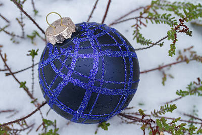 Photograph - Blue Christmas Ball On Heather With Fresh Snow by William Lee