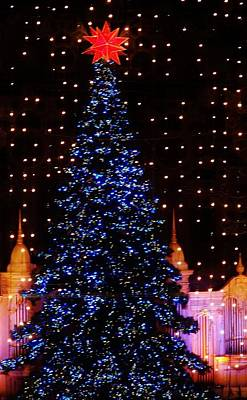 Photograph - Blue Christmas Tree by John Wartman