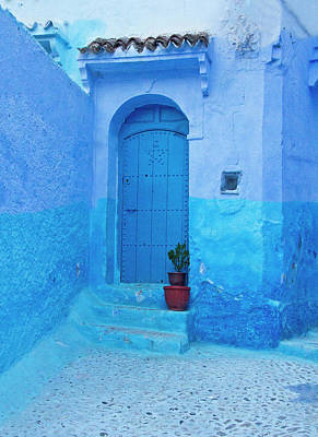 Photograph - Blue City Door With Plant by Sandra Anderson