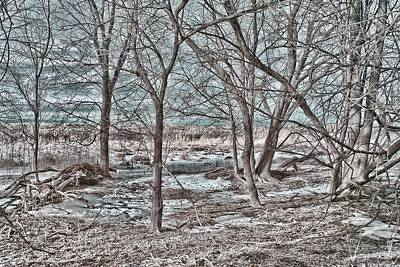 Photograph - Blue Clearing by Fred Moore