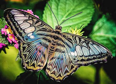 Fluttering Digital Art - Blue Clipper - Vibrant Color by Black Brook Photography