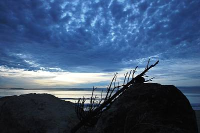 Photograph - Blue Clouds Beach Sunset Over Rocks And Branch by Matt Harang
