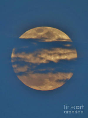 Photograph - Blue Clouds Over The Full Moon by D Hackett