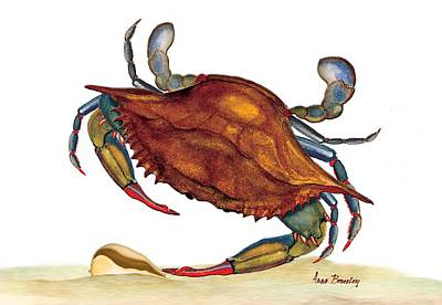 Art Print featuring the painting Blue Crab by Anne Beverley-Stamps