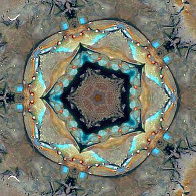 Art Print featuring the photograph Blue Crab Kaleidoscope by Bill Barber