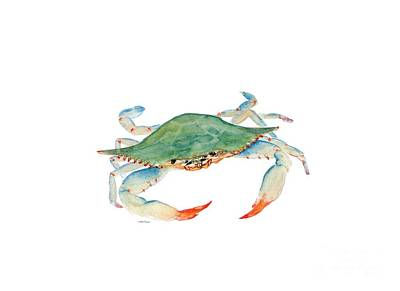 Painting - Blue Crab by Melly Terpening