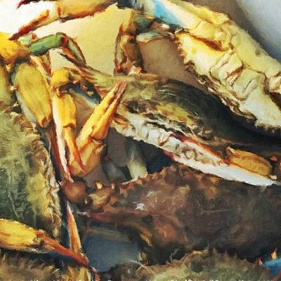 Yummy Photograph - Blue Crabs #crabs #catch #food #water by Joan McCool