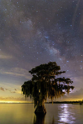 Nightsky Photograph - Blue Cypress Lake Milky Way by Stefan Mazzola