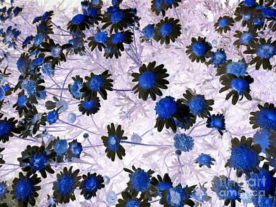 Painting - Blue Daisy by Dawn Hough Sebaugh