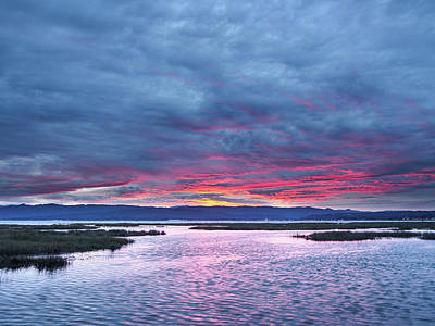 Photograph - Blue Dawn by Greg Nyquist