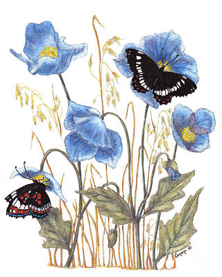 Blue-day Butterfly Art Print