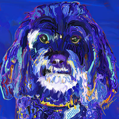 Dogs Painting - Cockapoo Blue by Jackie Jacobson