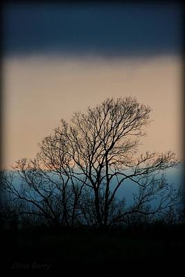 Photograph - Blue Dusk by Chris Berry