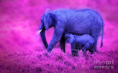 Photograph - Blue Elephants by Charuhas Images