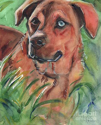 Watercolor Pet Portraits Painting - Blue Eyed Dog by Maria's Watercolor