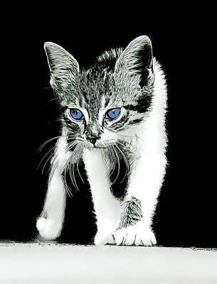 Wall Art - Digital Art - Blue Eyed Kitty by David G Paul