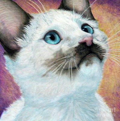 Fuqua - Artwork Drawing - Blue Eyed Prayer by Beverly Fuqua