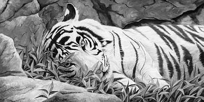 Tiger Painting - Blue Eyes - Black And White by Lucie Bilodeau