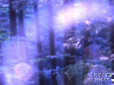 Photograph - Blue Fairies by Melissa Stoudt